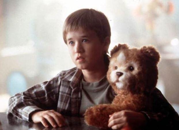A.I. David et Teddy