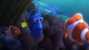Nemo, Dory et Martin
