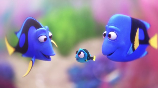 Parents de Dory et Dory