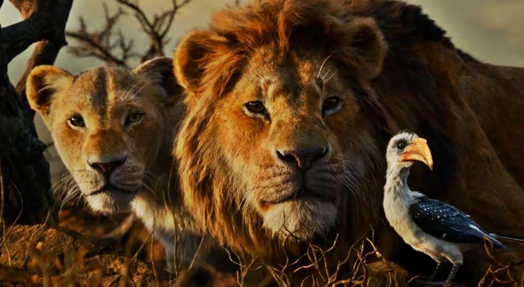 Critique Et Analyse Le Roi Lion Film Live Disney Jon